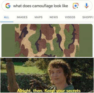 Camouflage: G what does camouflage look like  !  ALL IMAGES MAPS NEWS  VIDEOS  SHOPPI  Alright, then. K  our secrets