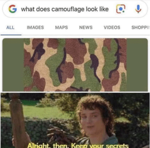 Me_irl: G what does camouflage look like  SHOPPI  ALL  IMAGES  MAPS  NEWS  VIDEOS  Alright, then. Keen your secrets Me_irl