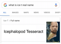 Real Name: G what is ice t real name  ALL  IMAGES  MAPS  NEWS  VIDEOS  SHOPP  Ice-T / Full name  lcephalopod Tesseract
