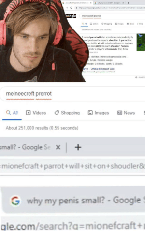 Google, Minecraft, and News: G why my penis small? Google Se  G mionefcraft parrot will sit on sho  +  x  C  https://www.google.com/search?q=mionefcraft+parrot+will+sit+on+shoudler8  egle  meineecreft prerrot  Videos  QAll  Shopping  Images  News  More  About 251.000 results (0.55 seconds)  A tamed parrot will also sometimes independently fly  and perch on the player's shoulder A parrot that  been told to sit will not attempt to perch. A player  ave one parrot on each shoulder Parrots  prefer a player's left shoulder first, if it is  3 Jul 2019  : Idlehttps//minecraft.gamepedia.com/  :Jungle, Bamboo Jungle  Height 0.9 Blocks; Width: 0.5 Blocks  arrot-Official Minecraft Wiki  ttps//minecraft.gamepedia.com/Parrot  About thi  meineecreft prerrot  QAll Videos  Shopping Images  回 News  About 251,000 results (0.55 seconds)     small? - Google Se  x  mionefcraft+ parrot+will + sit+on +shoudler&  G why my penis small? - Google  ale.com/search?q= mionefcraft+ Hmmm