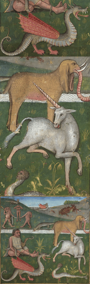 Fire, Tumblr, and Blog: G0C fire-burns-below:  discardingimages: wildlife of Ethiopia Le secret de l'histoire naturelle, France ca. 1480-1485 BnF, Français 22971, fol. 20r   Earliest known photograph of Judas Priest after Glenn joined