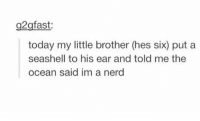 me as a brother https://t.co/aJmzvdfqJf: g2gfast  today my little brother (hes six) put a  seashell to his ear and told me the  ocean said im a nerd me as a brother https://t.co/aJmzvdfqJf