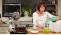 A peppy poodle explains the proper method for making edamame beans. → http://goo.gl/P1LLXe: GA A peppy poodle explains the proper method for making edamame beans. → http://goo.gl/P1LLXe