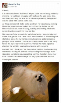 """<p>Gabe the Dog, a famous internet pupper and meme, has passed away. Sleep tight, Gabe. via /r/memes <a href=""""http://ift.tt/2jHQLqd"""">http://ift.tt/2jHQLqd</a></p>: Gabe the Dog  52 mins  Friends  It is with condolences that I must tell you Gabe passed away yesterday  morning. He had been struggling with his heart for quite some time,  and it very suddenly became worse. He went peacefully, being loved  with his family with a smile on his face  All things considered, Gabe had a good run. He was already pushing  his senior years when we picked him up from the shelter, but still  blessed us with six years of loving, dancing and borking. His borks  never slowed down until his very last day!  Not only was Gabe a wonderful part of our family his entertainment  career was greater than I ever could have dreamed of. Something that  started as a joke for my friends quickly became a global sensation,  going as far as national TV in Japan! It really meant a lot to our family  to see the joy he spread to everyone. We feel we made a positive  effect on the world by sharing Gabe's smile with everyone.  And with that, I thank you. You, the content creators, the fans leaving  comments, sharing his pictures and spreading the message, made  Gabe into something very special that won't be forgotten. Gabe may  have crossed the rainbow bridge but his joy remains with all of us.  Sleep tight, pupper! <p>Gabe the Dog, a famous internet pupper and meme, has passed away. Sleep tight, Gabe. via /r/memes <a href=""""http://ift.tt/2jHQLqd"""">http://ift.tt/2jHQLqd</a></p>"""