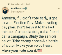 gabrielle: Gabrielle Union liked  Ana Navarro  @ananavarro  America, if u didn't vote early, u got  to vote Election Day. Make a voting  day plan. Don't leave it to the last  minute. If u need a ride, call a friend,  call a campaign. Study the sample  ballot. Take comfy shoes & a bottle  of water. Make your voice heard.  Make your vote count.