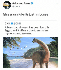 Bones, cnn.com, and Dinosaur: Gaius and Aulus  @vrunt  false alarm folks its just his bones  CNN@CNN  A bus-sized dinosaur has been found in  Egypt, and it offers a clue to an ancient  mystery cnn.it/2EHWi8k (@vrunt)