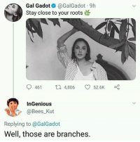 Tumblr, Blog, and Http: Gal Gadot@GalGadot 9h  Stay close to your roots  461 4,806 52.6K α。  InGenious  @Bees_Kut  Replying to @GalGadot  Well, those are branches. memehumor:  Well she tried