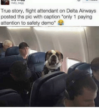 "Memes, True, and Delta: Gally beg9  True story, flight attendant on Delta Airways  posted ths pic with caption only 1 paying  attention to safety demo"" 🤣Damn"
