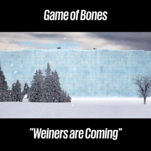 "Bones, Dank, and Game: Game of Bones  ""Weiners are Coming"" The new episode of Game of Bones is incredible! 😂😂  Crusoe the Celebrity Dachshund"
