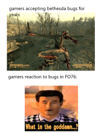 Fallout Meme: gamers accepting bethesda bugs for  yeats  E) Searc  HP  Raider  AP  CND  20/930  gamers reaction to bugs in FO76:  What in the goddamn.