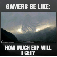 Gamers would know: GAMERS BE LIKE:  A GAMING MEMES  HOW MUCH EXP WILL  I GET? Gamers would know