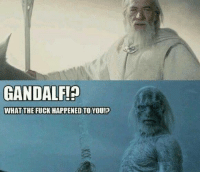 memes: GANDALF!?  WHAT THE FUCK HAPPENEDTO YOU!?