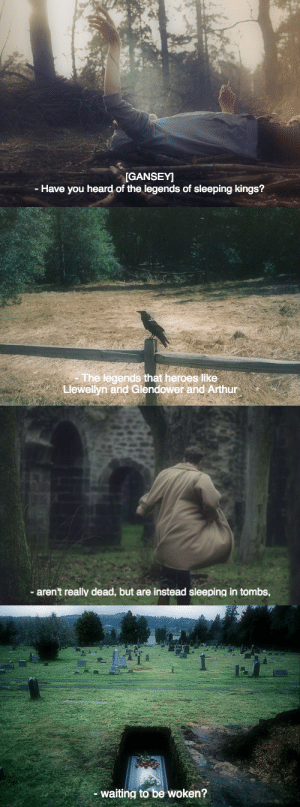 Arthur, Target, and Tumblr: GANSEY]  - Have you heard of the legends of sleeping kings?   The legendsat heroes lIke  Llewellyn and Glendower and Arthur  s like   aren't really dead, but are instead sleeping in tombs,   waiting to be woken? henriettafoxes:The Raven Boys screencaps // Maggie Stiefvater