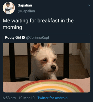 me irl: Gapalian  Gapalian  Me waiting for breakfast in the  morning  Pouty Girl Ф @Corinna Kopf  6:58 am 19 Mar 19 Twitter for Android me irl