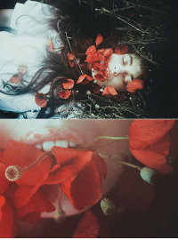 Tumblr, Blog, and Flickr: garagesaleofficial:   lucid dreams by  Laura Makabresku
