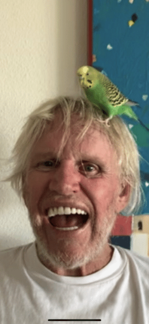 Gary Busey with a bird on his head: Gary Busey with a bird on his head