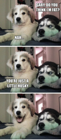 Husky, Fat, and Think: GARY, DO YOU  THINK [M FAT?  NAH  YOU'RE JUSTA  LITTLE HUSKY <p>Husky relationshipgoals</p>