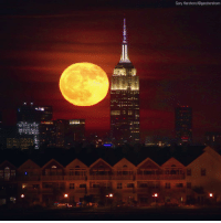 Empire, Friday, and Memes: Gary Hershorn/@garyhershorr On Friday, the last full moon of Autumn, known as the Frost Moon, shone brightly behind the Empire State Building. (via @garyhershorn)