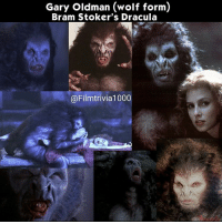 Memes, Collage, and Dracula: Gary Oldman (wolf form  Bram Stoker's Dracula  (a Filmtrivia1000 Sadie @sadielizafrost Frost's character Lucy gets seduced by Dracula in wolf form in Bram Stoker's Dracula. Gary Oldman's wolf suite caused the same heat and dehydration that his bat suit did ● ● ● Movies Films Trivia Cinephiles Cinema CineMark SetDesign MovieProduction Directors Cinematography MovieMaking FilmIndustry Screenplays Actors Actresses MovieBuff FilmCommunity BehindTheScenes FunFacts FilmMaker Moviess Collage TheMoreYouKnow Directing MotionPictures MovieLover Filmset MovieNerd FilmGeek FilmCollection
