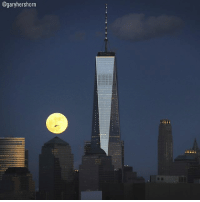 """The first supermoon of 2018, known as a 'Wolf moon' was seen in the sky yesterday. The 'Wolf moon' will be followed by a """"super blue moon"""" on January 31 which will also coincide with a lunar eclipse.: @garyhershorn The first supermoon of 2018, known as a 'Wolf moon' was seen in the sky yesterday. The 'Wolf moon' will be followed by a """"super blue moon"""" on January 31 which will also coincide with a lunar eclipse."""