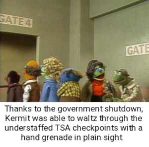 God, Government, and In Plain Sight: GATE 4  GATE  Thanks to the government shutdown,  Kermit was able to waltz through the  understaffed TSA checkpoints with a  hand grenade in plain sight God bless