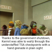 Government, In Plain Sight, and Gate: GATE  Thanks to the government shutdown,  Kermit was able to waltz through the  understaffed TSA checkpoints with a  hand grenade in plain sight Kermit the terrorist