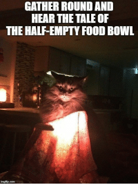 Cats, Food, and Funny: GATHER ROUND AND  HEAR THE TALE OF  THE HALF-EMPTY FOOD BOWL Every week we collect the highest voted cat memes that our users created for ICanHas Cheezburger's LOLCats. If you want to check out more cat memes that we know will make you laugh, check out Lolcat.#cats #cats memes #lol cats #funny cats