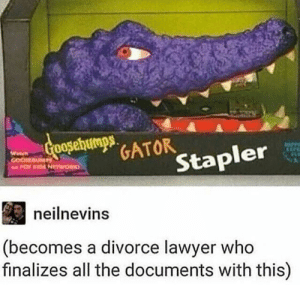 Goals, Lawyer, and Life: GATOR  er  Stap  neilnevins  (becomes a divorce lawyer who  finalizes all the documents with this) Life goals