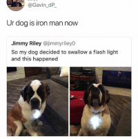 Dc or Marvel?: @Gavin_dP  Ur dog is iron man now  Jimmy Riley @jimmyrileyO  So my dog decided to swallow a flash light  and this happened Dc or Marvel?