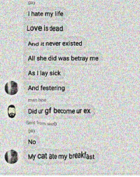 i hate my life: gay  I hate my life  Love is dead  And it never existed  All she did was betray me  As lay sick  And festering  man hoe  Did ur gf become ur ex  Sent fom web  No  My cat ate my breakfast