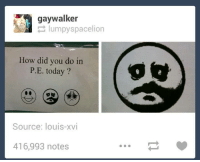 lumpy: gay lumpy spacelion  How did you do in  P.E. today?  Source: louis-xvi  416,993 notes