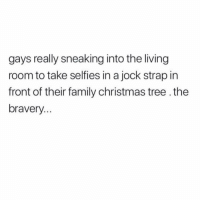Christmas, Family, and Christmas Tree: gays really sneaking into the living  room to take selfies in a jock strap in  front of their family christmas tree.the  bravery Such courage. We salute you. (@youvegotnomale)