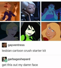 Memes, 🤖, and Sinbad: gayventress  lesbian cartoon crush starter kit  garbageshepard  get this out my damn face THAT CHICK FROM THE SINBAD MOVIE IM FEELING ATTACKED -j