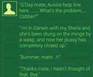 "Pussy, Help, and Thought: ""G'Day mate, Aussie help line  Cobber?""  I'm in Darwin with my Sheila and  she's been stung on the minge by  a wasp, and now her pussy has  completely closed up.""  Bummer, mate.. .!!  Thanks mate, I hadn't thought of  that. Bye. Ah, Australians"