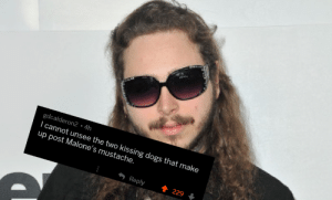 I cant unsee it now via /r/funny https://ift.tt/2BuADSO: gdcalderon2 4h  I cannot unsee the two kissing dogs that make  up post Malone's mustache.  Reply  229 I cant unsee it now via /r/funny https://ift.tt/2BuADSO