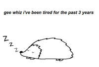 whiz: gee whiz i've been tired for the past 3 years