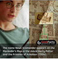 What did everyone think of Fantastic Beasts? Out of 5, what would you rate it? 🤔 Follow @geekquote @geekfeeddotcom @geekfacts @geekfunny: Geek  Facts  g e e fe e d c o m  The name Newt Scamander appears on the  Marauder's Map in the movie Harry Potter  and the Prisoner of Azkaban (2004). What did everyone think of Fantastic Beasts? Out of 5, what would you rate it? 🤔 Follow @geekquote @geekfeeddotcom @geekfacts @geekfunny
