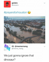 Dinosaur, Meme, and Dinosaurs: gelato  @cxxxrn  #prayersforhouston  IG: @mememang  @meme_mang  We just gonna ignore that  dinosaur? Well then 🤔