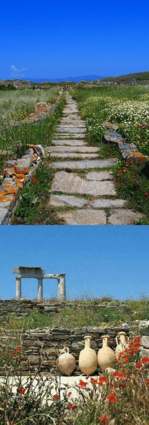 gemsofgreece: According to Greek Mythology, the island of Delos is the birthplace of Apollo. : gemsofgreece: According to Greek Mythology, the island of Delos is the birthplace of Apollo.
