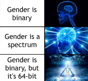 Gender, Mine, and Yes: Gender is  binary  Gender is a  spectrum  Gender is  binary, but  it's 64-bit Mine is 01111110 11110010 11101010 01101011 00111000 10110111 10001101 11101001 (yes, I know it's not a 64 bit binary number but it couldn't fit)