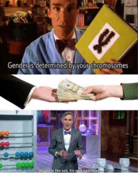 Memes, Sex, and 🤖: Gender is determined by your chromosomes  e9e0  Genderis like sex, it's on a spectrum Sound about right
