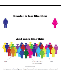 gender: Gender is less like this:  And mnore like this:  1/2 boy  1/3 girl  boy from the neck up,  everywhere else girl  artivism project com  How is gender on such a broad spectrum when you have to use the first 2 genders as a reference for the other 1,0oo?