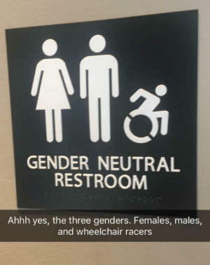 Dank, Memes, and Target: GENDER NEUTRAL  RESTROOM  Ahhh yes, the three genders. Females, males,  and wheelchair racers I'm loving the inclusiveness of 2018 by bubblesthewriter MORE MEMES