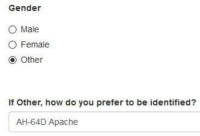 I sexually identify as an attack helicopter -Innadesert: Gender  O Male  O Female  O Other  If other, how do you prefer to be identified?  AH-64D Apache I sexually identify as an attack helicopter -Innadesert