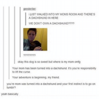 What else should you do? funnyfriday funnytumblr tumblr funny tumblrtextpost funnytumblrtextpost funny haha humor hilarious: gendertiert  ijUST WALKED INTO MY MOMS ROOM AND THERE'S  A DACHSHUND IN HERE  WE DONT OWN A DACHSHUND????  okay this dog is so sweet but where is my mom omfg  Your mom has been turned into a dachshund. It's you're responsibility  to lift the curse.  Your adventure is beginning, my friend.  you're mom was tunned into a dachshund and your first instinct is to go on  tumblr?  yeah basically What else should you do? funnyfriday funnytumblr tumblr funny tumblrtextpost funnytumblrtextpost funny haha humor hilarious