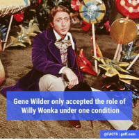 "The condition? That he was allowed to limp and then perform a somersault when his character first met the children in the film. When the director asked why, Wilder replied, ""From that time on, no one will know if I'm lying or telling the truth."" Thanks for all the laughs, Mr. Wilder!: Gene Wilder only accepted the role of  Willy Wonka under one condition  @FACTS I guff com The condition? That he was allowed to limp and then perform a somersault when his character first met the children in the film. When the director asked why, Wilder replied, ""From that time on, no one will know if I'm lying or telling the truth."" Thanks for all the laughs, Mr. Wilder!"