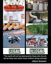 """☝☝: (Genetically Modified Foods)  Selling Raw Milk  FBUCOMII  HINK  LIBERTARIAN  Nursery Water  with added fluoride  Collecting Rainwater  RITALIN LA 1  Growing Hemp  Side RitainA  Spying on US citizens  Giving a tour of the monuments in  via the Patriot Act  Washington D.C: Withouta license.  LEGAL LLEGAL  """"The world will not be destroyed by those who do evil,  but by those who watch them without doing anything  -Albert Einstein ☝☝"""