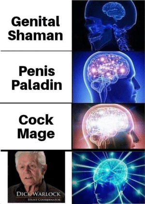 Dank, Memes, and Target: Genital  Shaman  Penis  Paladin  Cock  Mage  DICK WARLOCK  STUNT COORDINATOR He has come by LolcatXTREME MORE MEMES