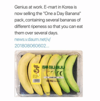 "Memes, News, and Work: Genius at work. E-mart in Korea is  now selling the ""One a Day Banana""  pack, containing several bananas of  different ripeness so that you can eat  them over several days.  news.v.daum.net/v/  201808060602..  하루하나  매일 맛있는  080 Tag someone who will actually appreciate this 🍌🍌🍌"