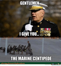 us marine: GENTLEMEN  I GIVE YOU  THE MARINE CENTIPEDE  ekezzed @ort  eme Center  memecenter. Com